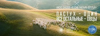 Пастух – один, все остальные – овцы